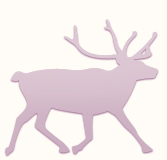 Седьмая Летняя Школа в Лапландии «Политика природы»