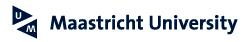 Maastricht Summer School 2013